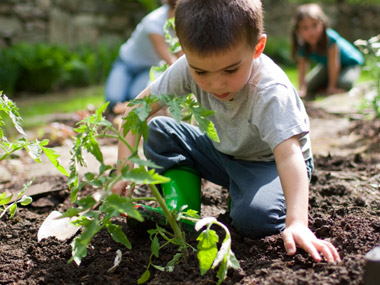 Jumpstart_Gardening.