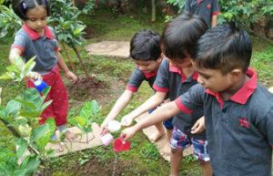 Jumpstart_Nature play
